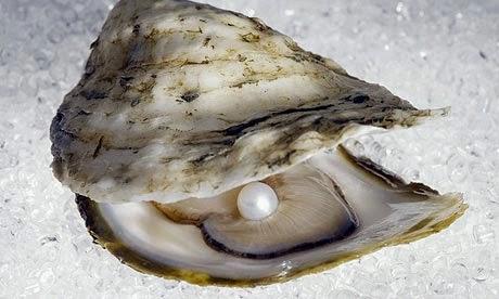Perla e Mollusco